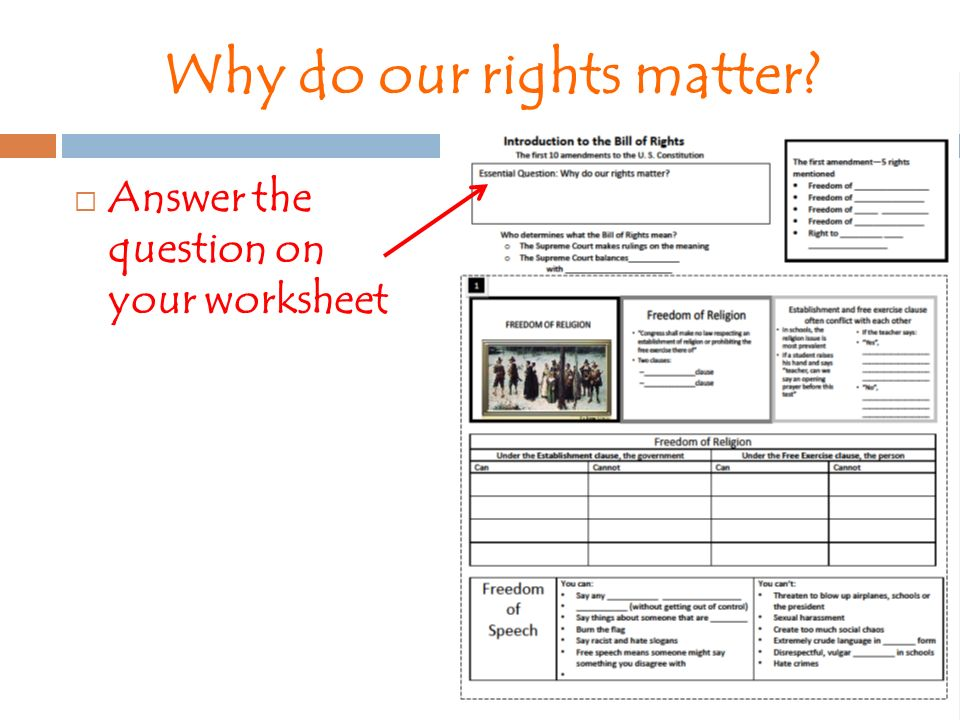 Introduction to The Bill of Rights ppt download – Bill of Rights Worksheet