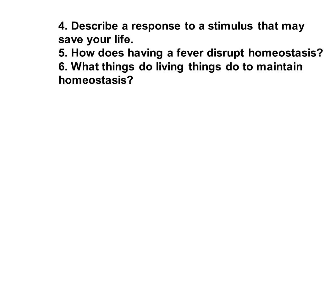 4 things cells do to maintain homeostasis - 23 4