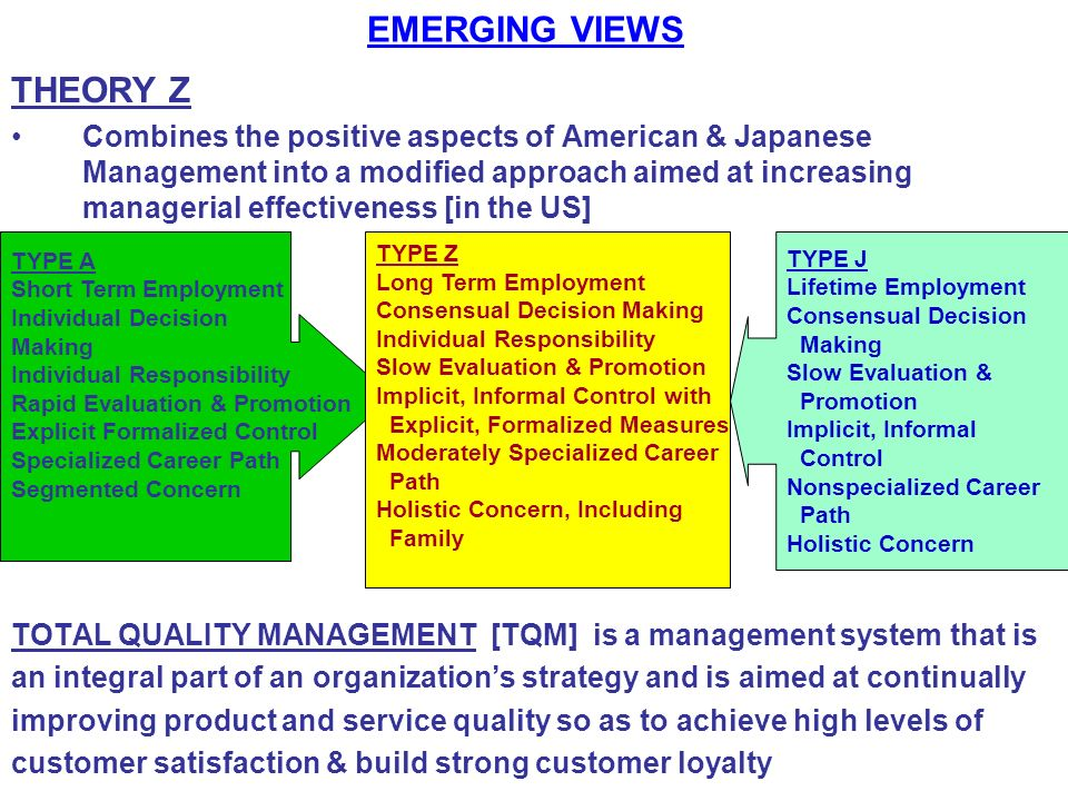 EMERGING VIEWS THEORY Z