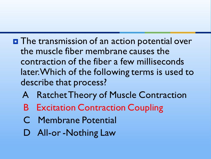 describe the process of excitation contraction coupling Excitation-contraction coupling membrane excitation: the neuromuscular junction  smooth muscle contraction is controlled by the autonomic nervous system,.