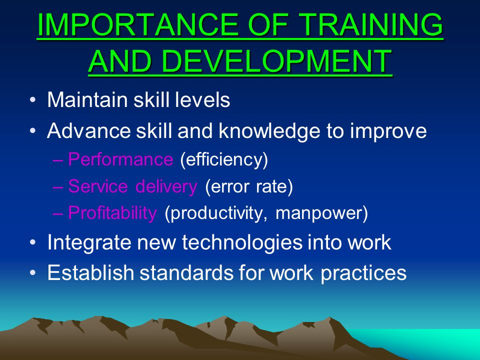 IMPORTANCE OF TRAINING AND DEVELOPMENT