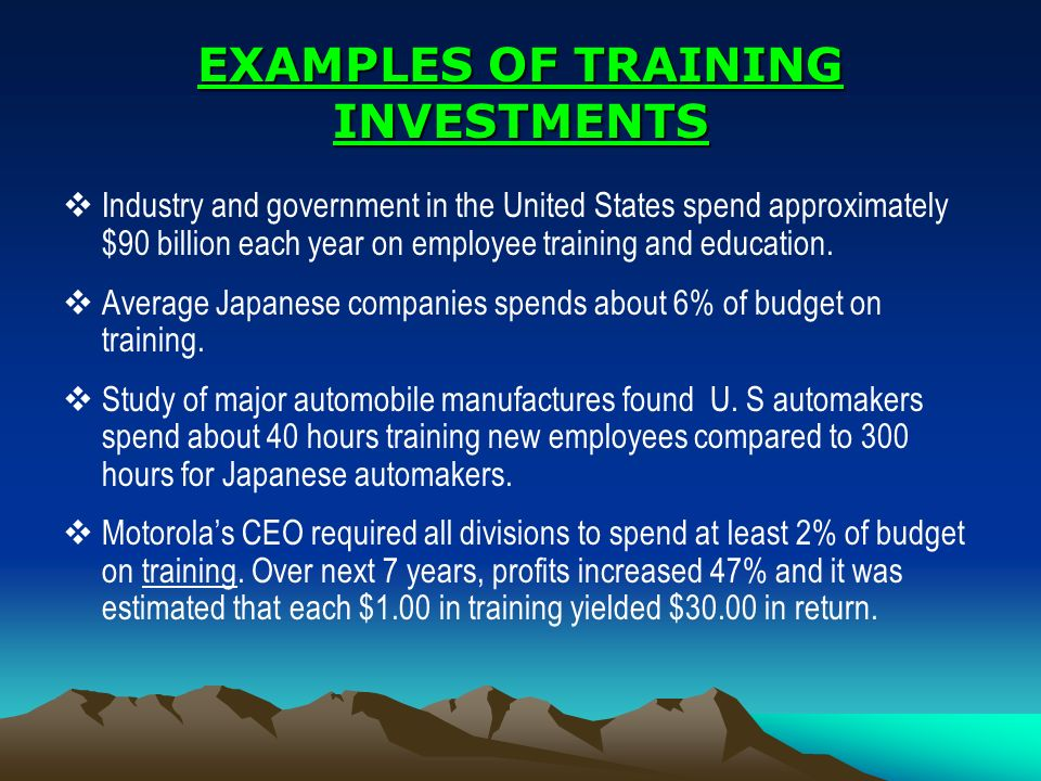 EXAMPLES OF TRAINING INVESTMENTS