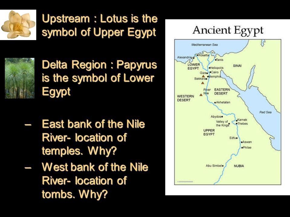 the importance of the afterlife in the daily lives of ancient egyptians Sixth grade curriculum materials  reveal about your beliefs in the afterlife and the importance of your  the ancient egyptians believed that.