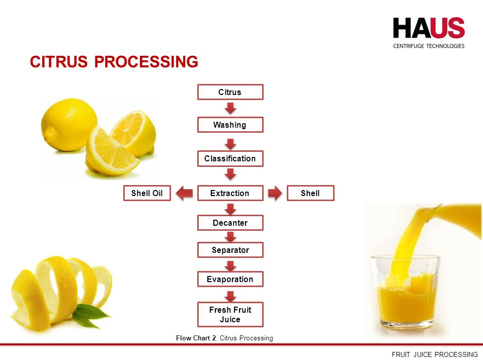fruit processing Fruit processing machines fron fruit wasing, peeling to juice and pulp making are all supplied by us delicate design and easy operation.