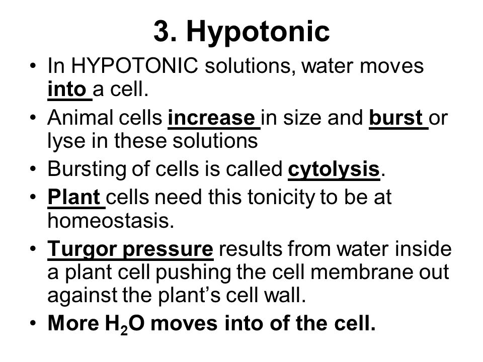 Copy and answer the following EQ into your science journal ppt – Cell Membrane and Tonicity Worksheet Answers