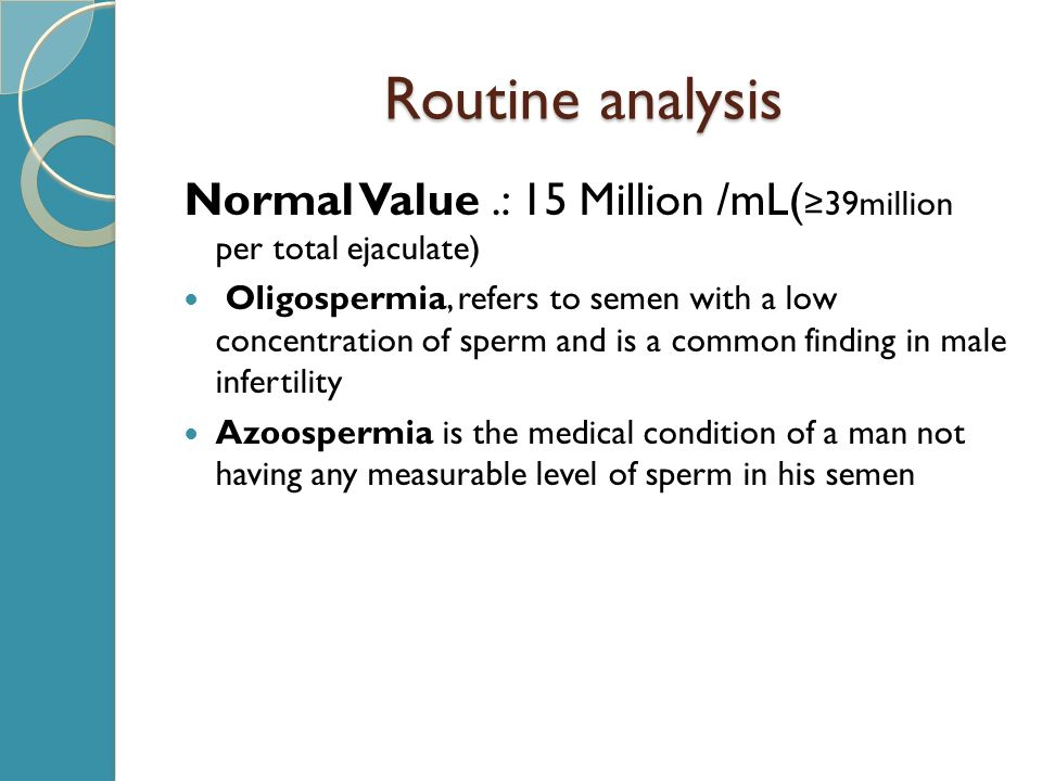 total motile sperm 2.4 million