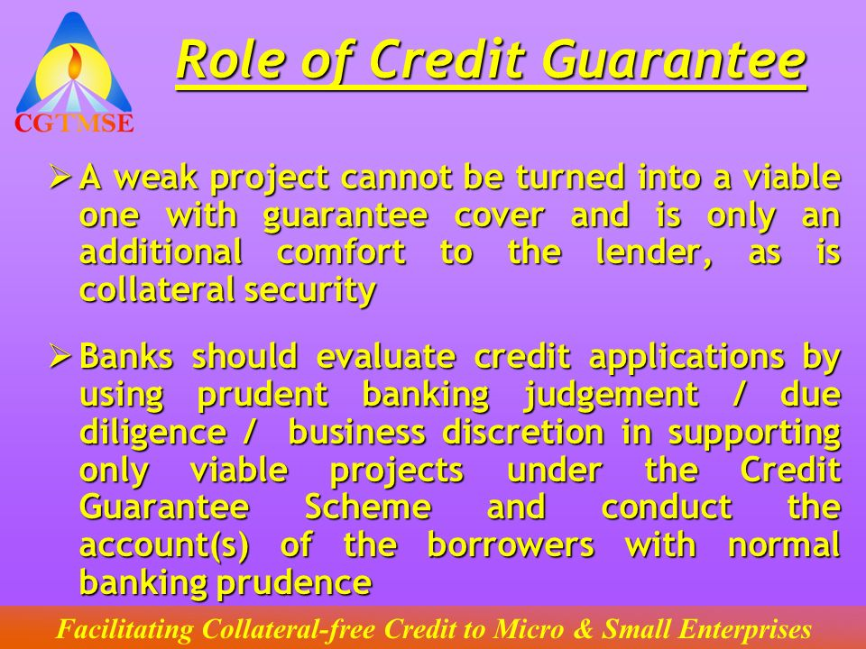 Role of Credit Guarantee