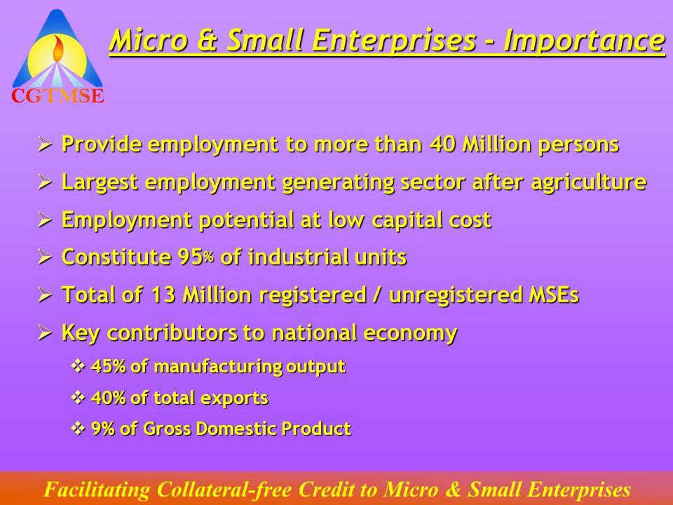 Micro & Small Enterprises - Importance
