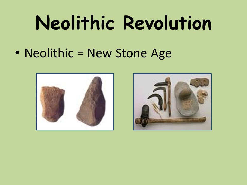 new stone age Learn interesting information about stone age for kids find out more about stone age facts and improve your knowledge with dk find out, to help you learn.