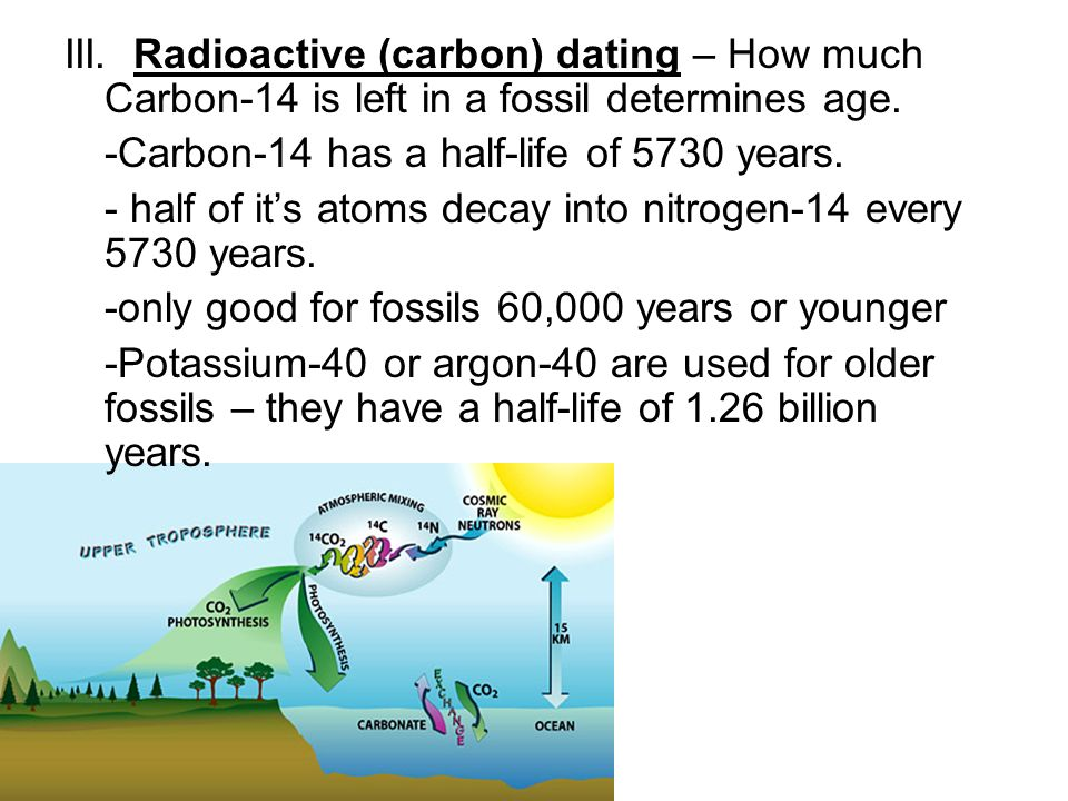 How is carbon dating used to determine the age of fossils
