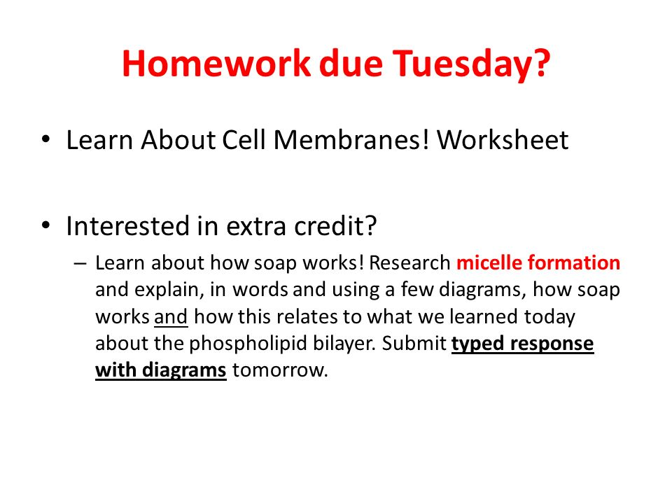 Conversion Worksheets Chemistry Word Cell Membrane Structure And Function  Ppt Video Online Download Worksheets On Healthy Eating Word with Algebra Function Worksheet Pdf Homework Due Tuesday Learn About Cell Membranes Worksheet Sentence Combining Worksheets Pdf