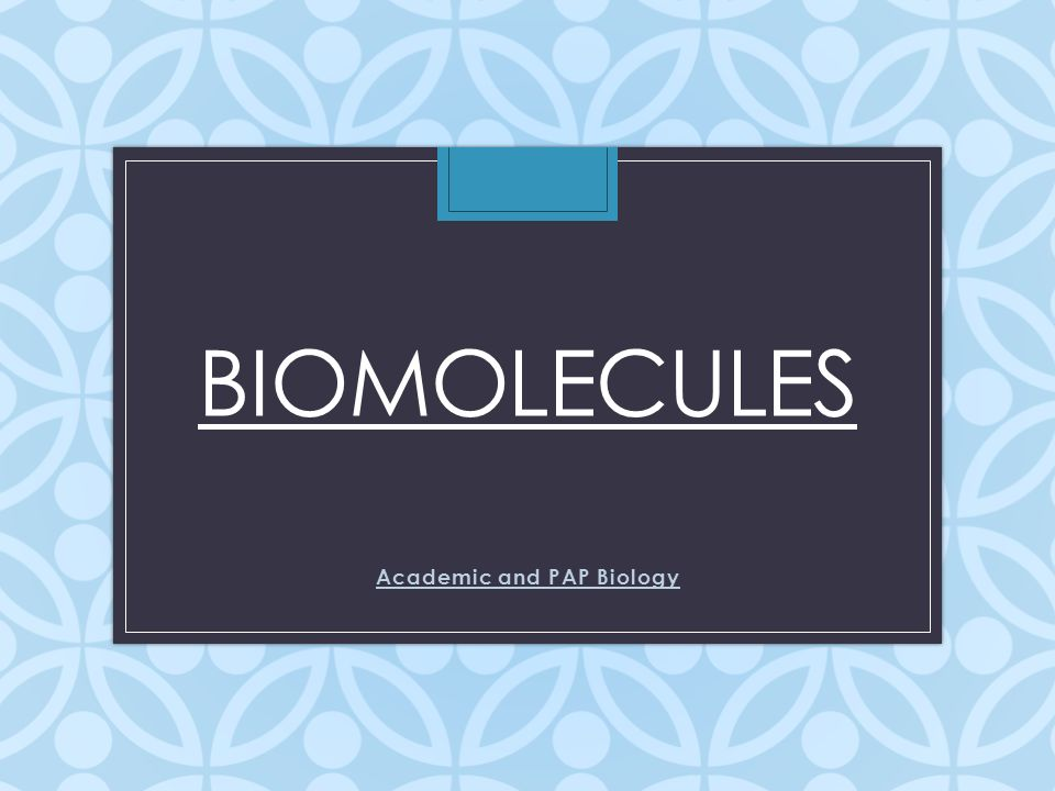 biomolecules biology Biomolecules at kenyon molecular biology tutorials using jmol by students from biol 263: molecular biology and genomics c elegans tc3 transposase hth dna.