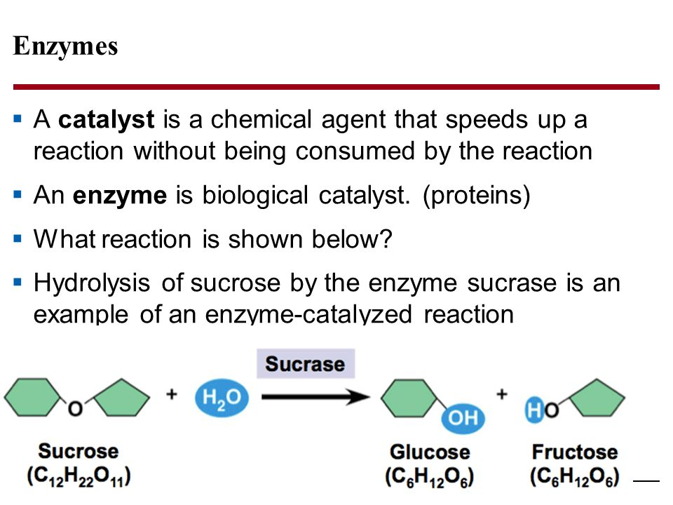 how to find a catalyst in a chemical reaction