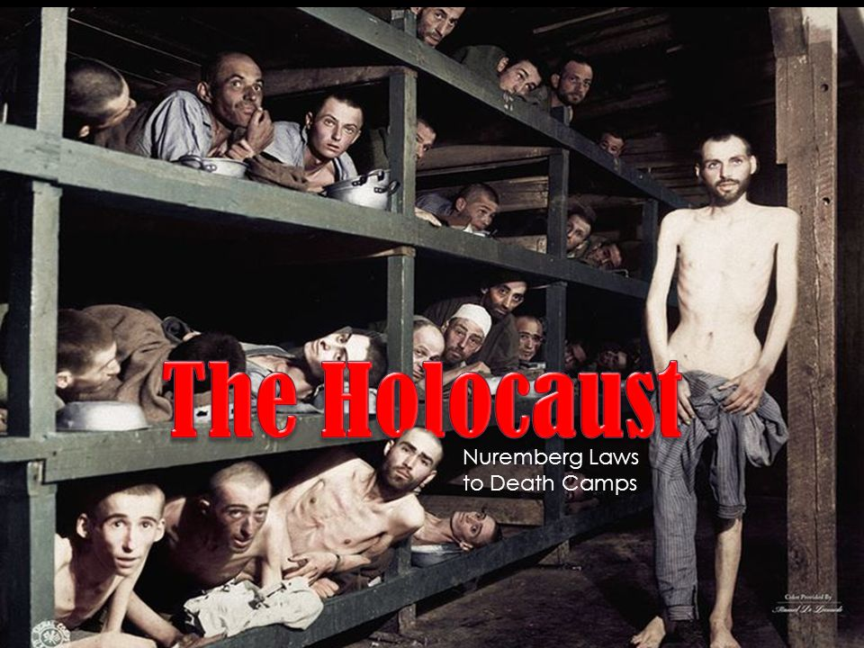 the story of our struggles and death at auschwitz camp Polish death camp controversy (reprinted in 2010 as story of a and tvp2 director marcin wolski remarked that the auschwitz death camp might be called a.