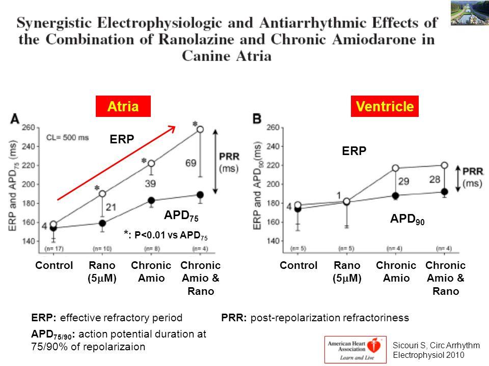 Atria Ventricle ERP ERP APD75 APD90 *: P<0.01 vs APD75 Control Rano