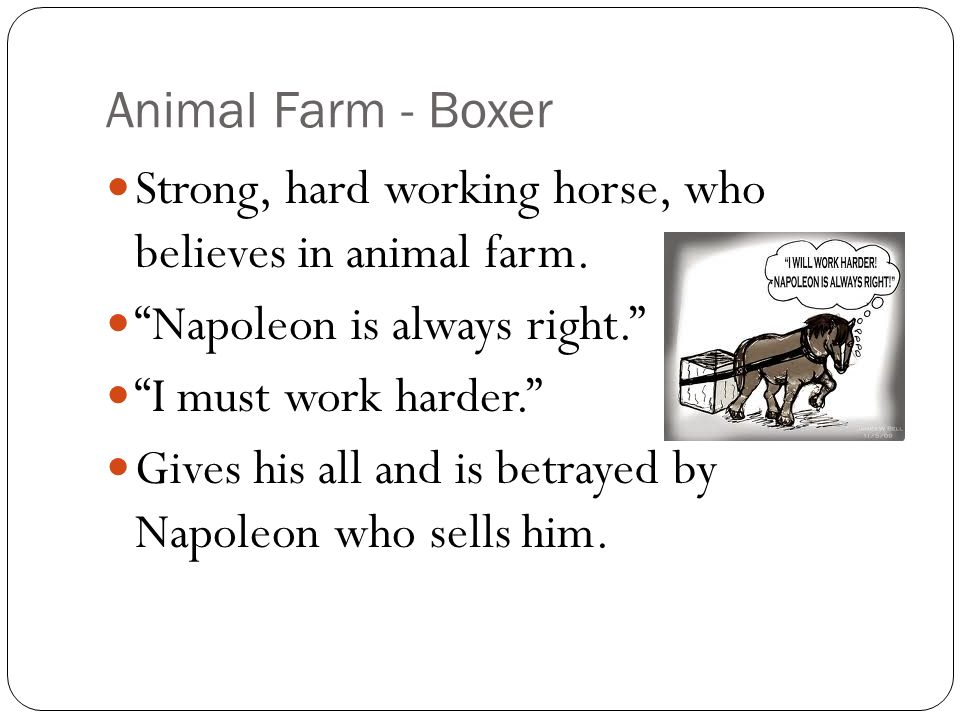 a description of boxer the horse from animal farm much like my mother Get free homework help on george orwell's animal farm: book summary unlike boxer, who always thinks of ok manage my reading list.