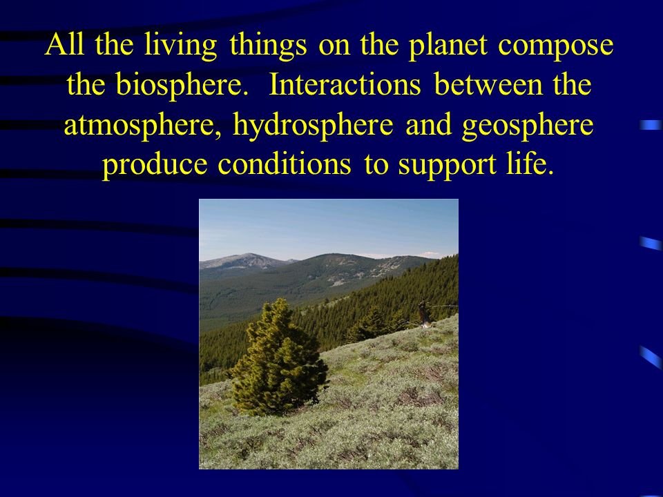 All the living things on the planet compose the biosphere