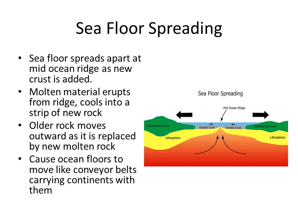 how the sea floor is studied Today's oceanographers use sonar instruments to generate a sound signal that is bounced or echoed off the sea floor and then recorded on board the ship.