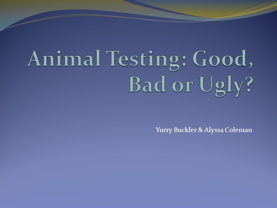 is animal testing all that bad Peoples opinions on animal testing differs, some are ok with it if it is for valid medical reasons and tests are done ethically, others refuse to accept animal testing full-stop.