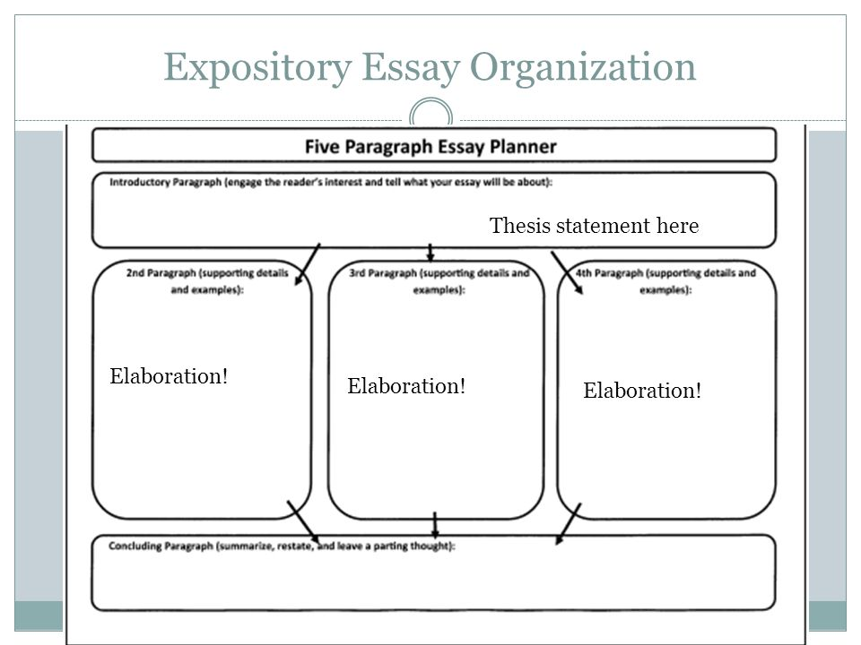 Organisation of an essay