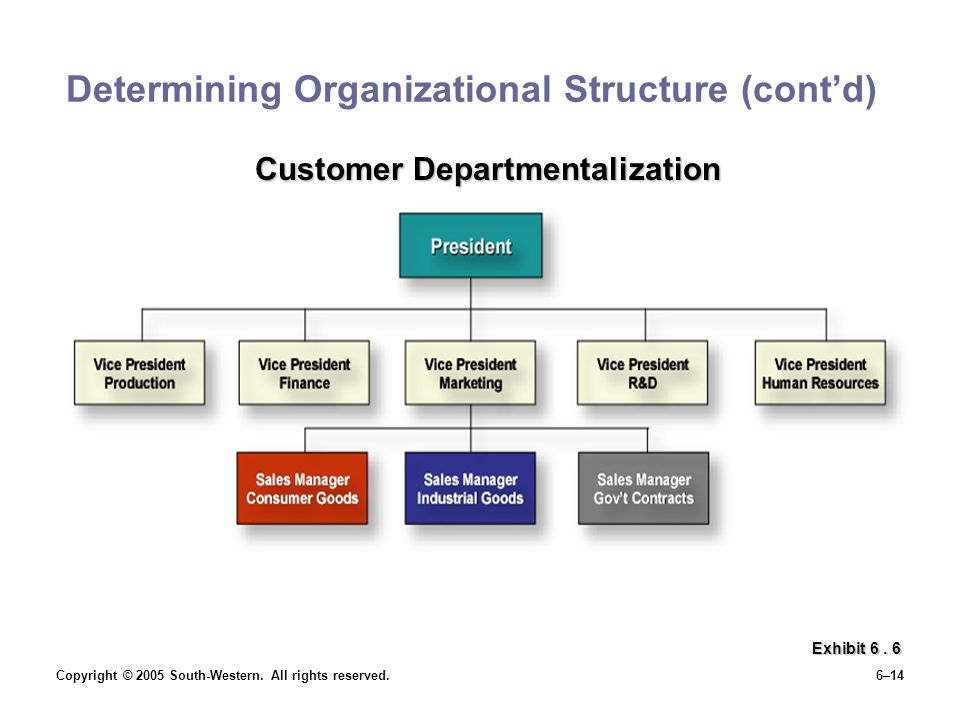 Determining Organizational Structure (cont'd)
