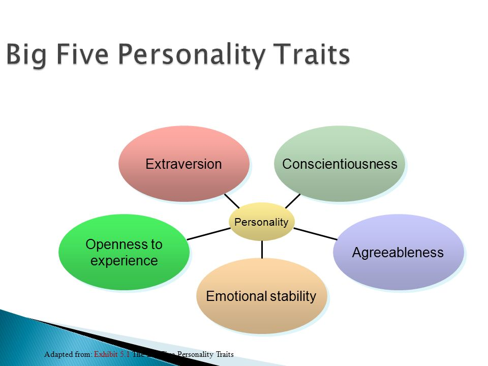 the big five personality Saylor url: wwwsaylororg/bus208 subunit 13 the saylor foundation saylororg page 1 of 4 the big five personality test introduction researchers and psychologists have identified the following personality.