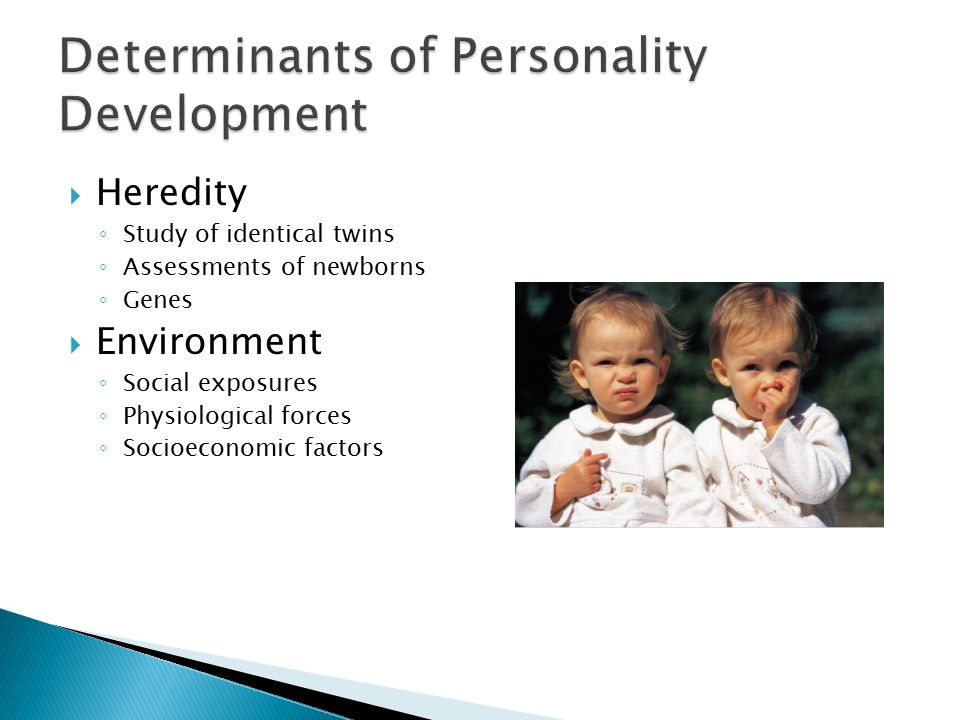 development of personality heredity or environment Behavioral genetics concerns the degree to which personality is inherited from  parents  led to questioning whether the family environment affects development.