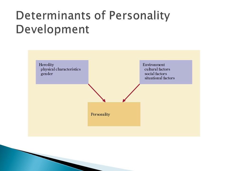 What Are Personality Determinants?