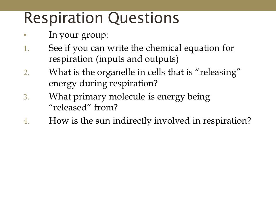 write the equation for cellular respiration