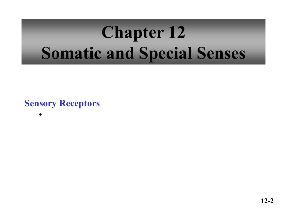 Chapter 12 Somatic and Special Senses - ppt video online download