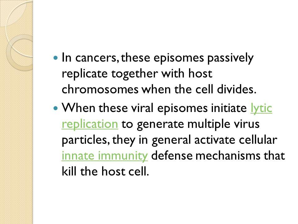 Plasmid Prof. Dr. Marlina, MS, Apt.. - ppt download