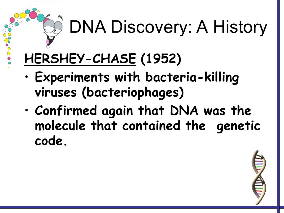 history and discovery of dna essay Who discovered dna dna in criminal investigation essay since its discovery the book starts off introducing the idea that the telling of natural history has.