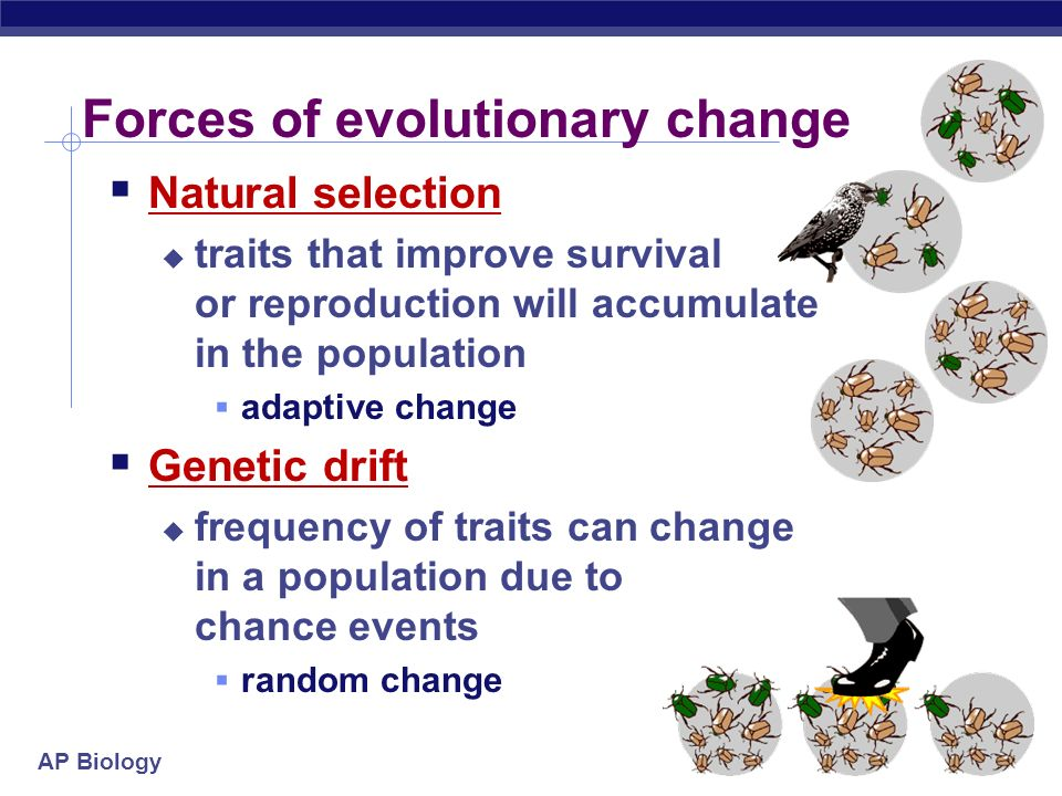 Why Is Natural Selection Not Goal Oriented