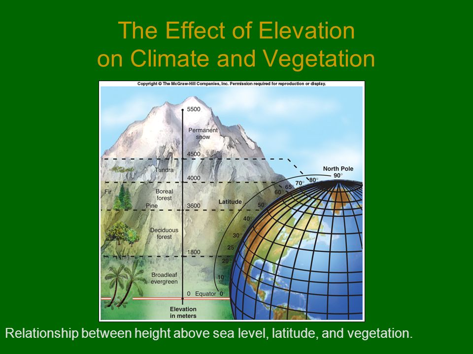 elevation and climate relationship