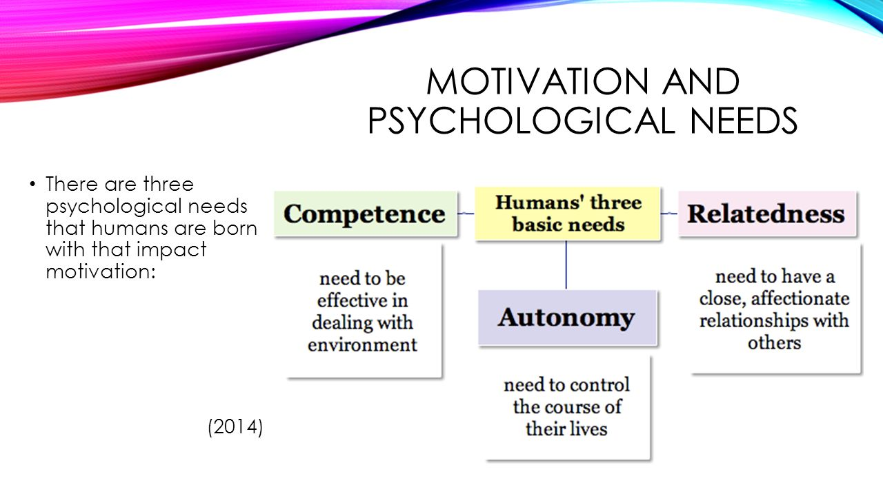 intrinsic motivation and self determination in human behavior pdf download