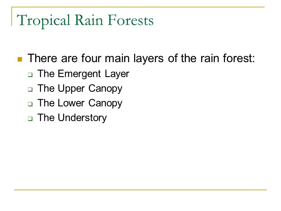 Tropical Rain Forests There are four main layers of the rain forest: