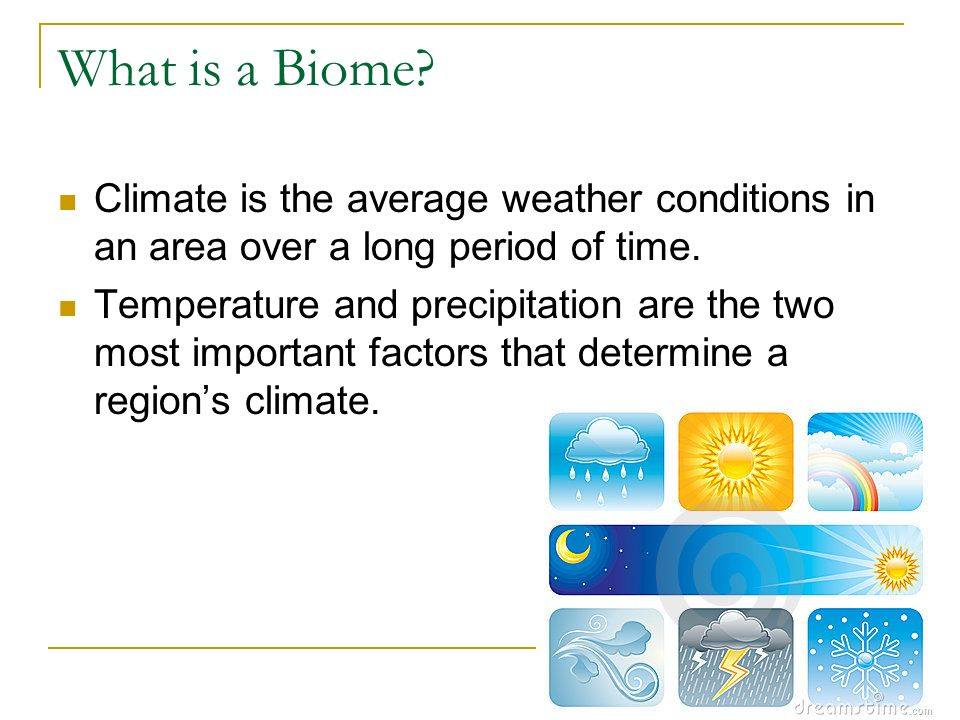 What is a Biome Climate is the average weather conditions in an area over a long period of time.