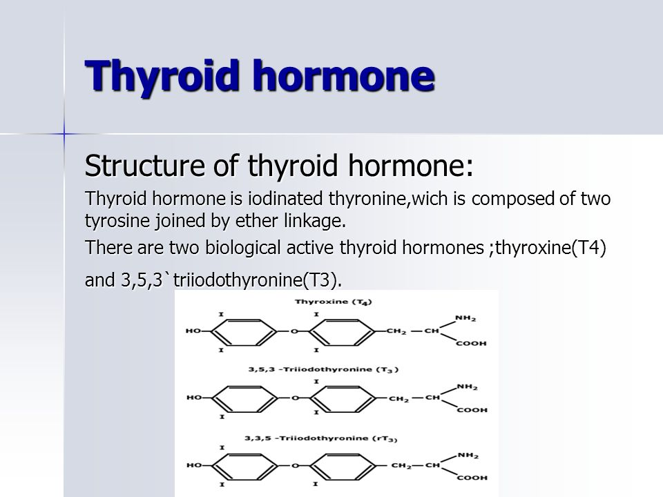 MyThyroidcom Pregnancy