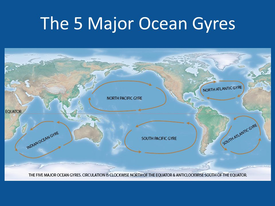 Ocean Currents Waves And Tides Chapter Highways In The - The five major oceans