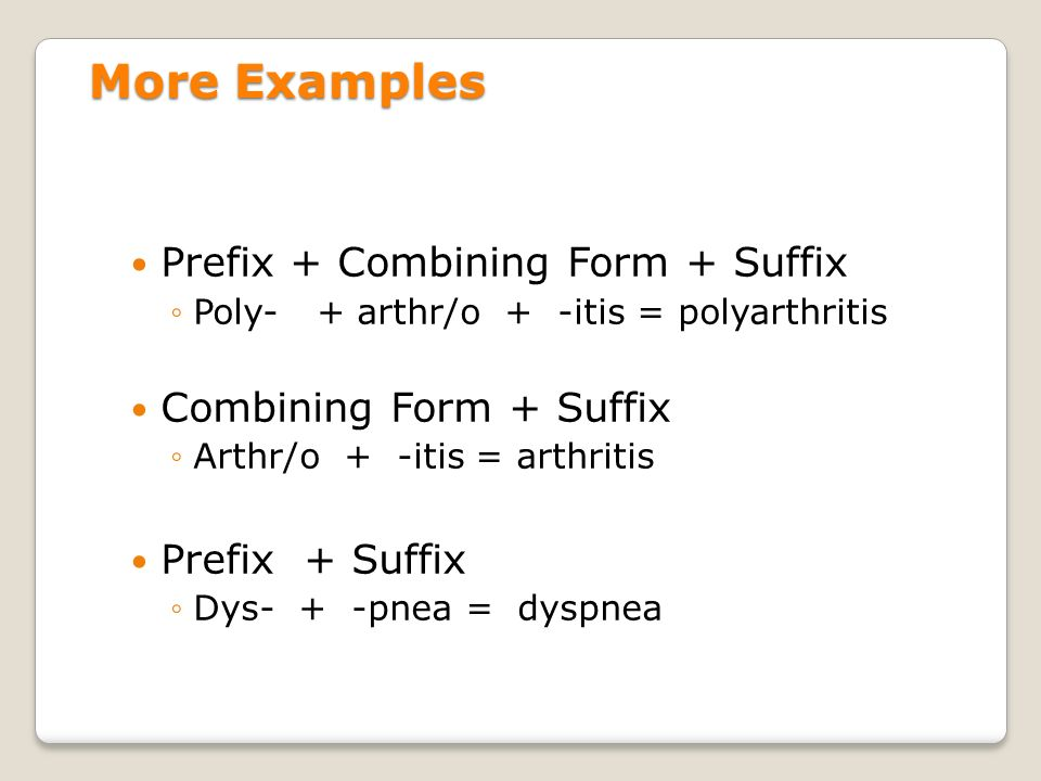 Chapter 1: Introduction to Medical Terminology Mrs. Spearman - ppt ...