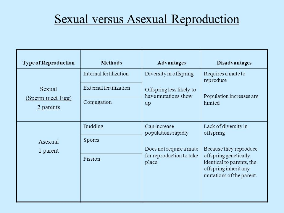 Disadvantages of sexual reproduction compared to asexual