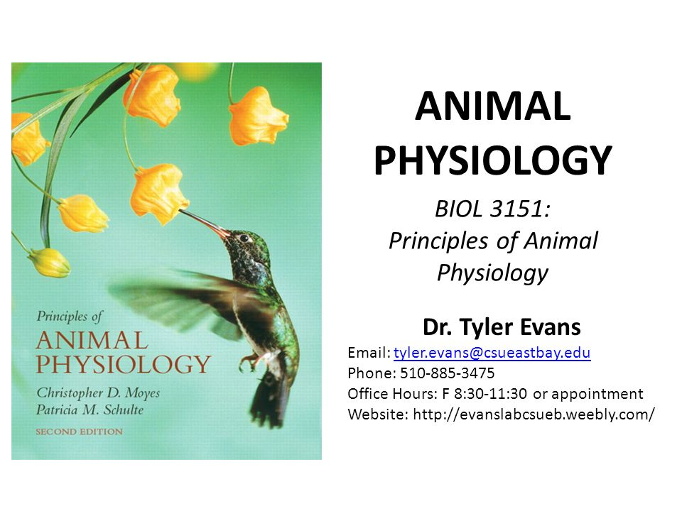 animal physiology World precision instruments supplies a variety of important lab supplies and equipment used by animal physiology researchers, schools and veterinary professionals.