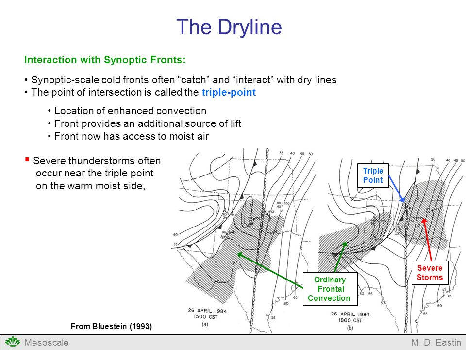 The Dryline Interaction with Synoptic Fronts: