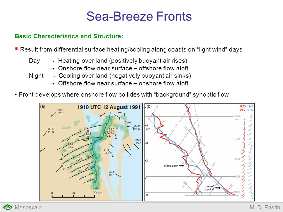 Sea-Breeze Fronts Basic Characteristics and Structure: