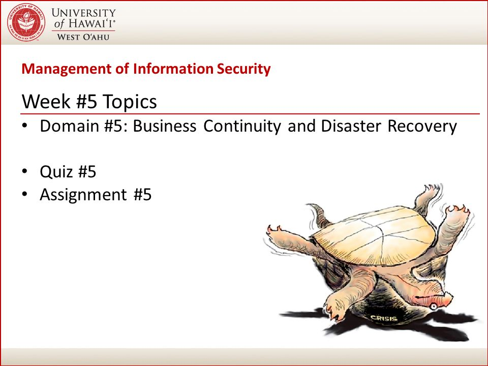 Disaster Management Assignment Help