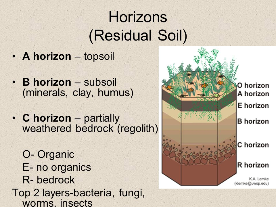 Weathering and soils ppt video online download for Mineral soil vs organic soil
