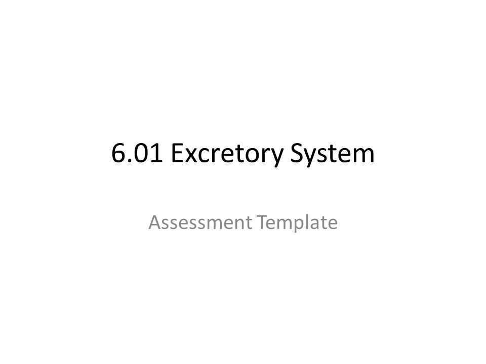 1 601 excretory system assessment template