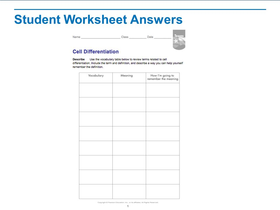 Pictures Cell Differentiation Worksheet Getadating – Cell Differentiation Worksheet