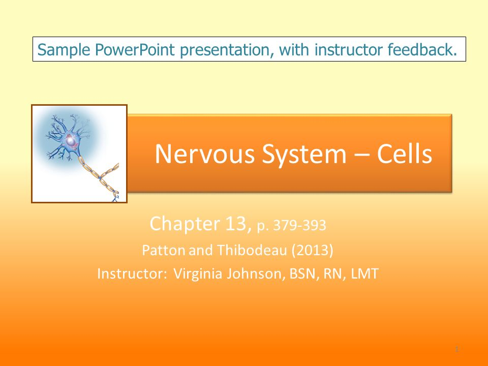 Nervous System – Cells Chapter 13, p - ppt video online download