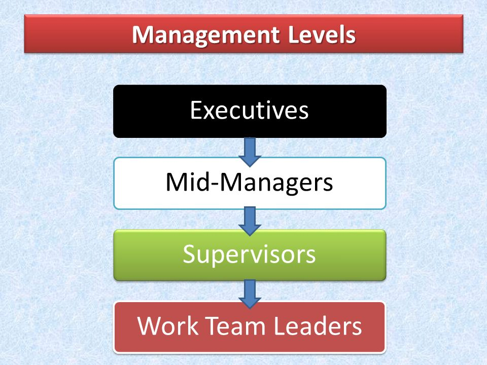 Executives Mid-Managers Supervisors Work Team Leaders